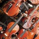 Violins string instruments