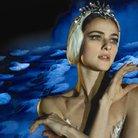 Swan Lake English National Ballet