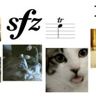 Musical notation, as described by cats